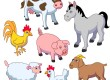 Pet Products For Happy Hooves And Perfect Paws