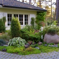 Garden Irrigation - Watering Trees and Shrubs During a Drought Year