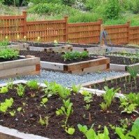 Simple Ways to Enhance the Garden