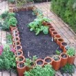 Gardening Information - Add Color and Variety with Container Plants