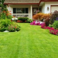 Lawn Mowers - Easy-to-handle Garden Equipment