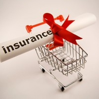 Purchasing Tour Insurance Online Helps Save Time and Money Both